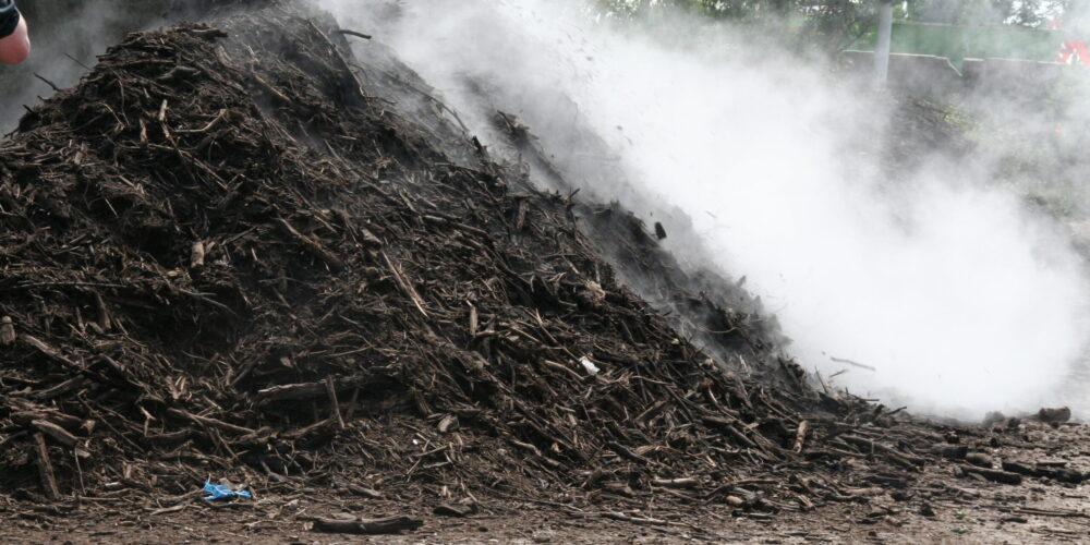 Moeten Biomassa Centrales Nu Snel Weg?
